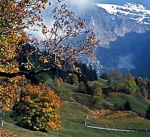 Autumn in Grindelwald, Switzerland #3 by David J Dionne