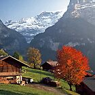 Autumn in Grindelwald, Switzerland #4 by David J Dionne
