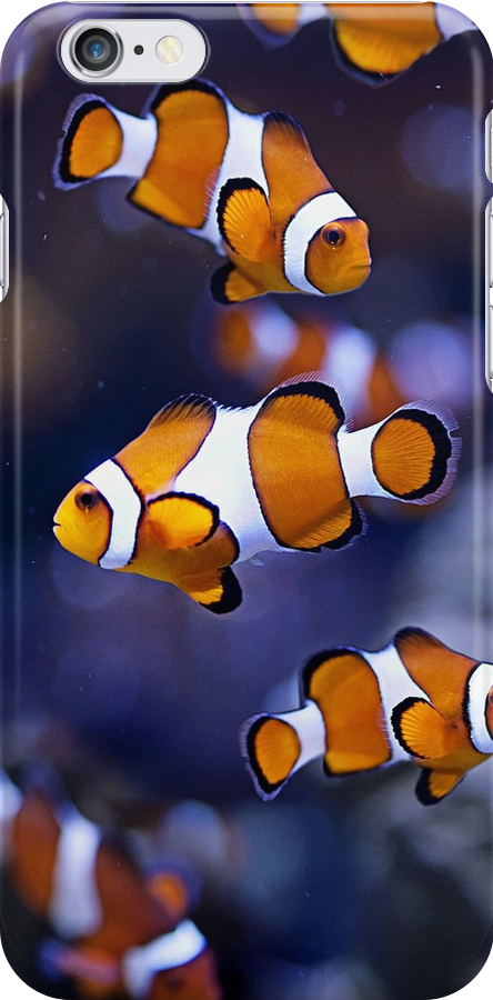 nemo clownfish by BlaizerB