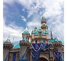 Diamond Castle Photographic Print
