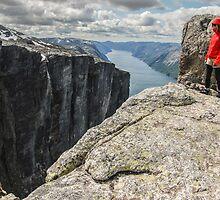 Norwegian fjord by artesonraju