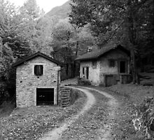 Swiss Country Road, Take me Home (in B&W). Ticino, Switzerland 2010 by Igor Pozdnyakov