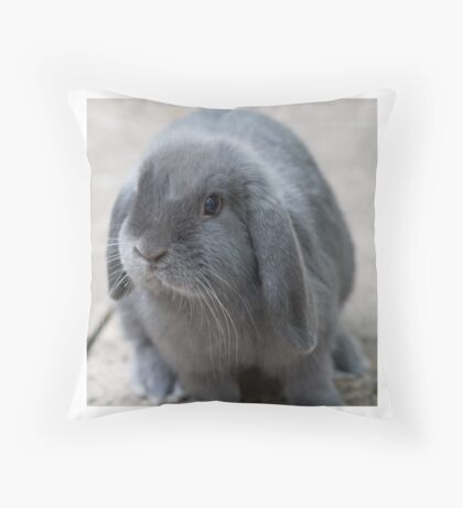 Black lop rabbit Throw Pillow