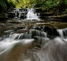 Flowy Leura Flow by Robert Mullner