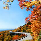 Linn Cove Viaduct by Karen Peron