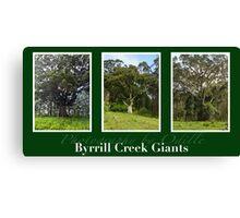 Byrrill Creek GIants Canvas Print