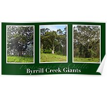 Byrrill Creek GIants Poster