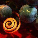 Grapes by BlaizerB