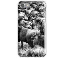 Wildebeest iPhone Case/Skin