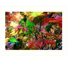 colors of Autumn no.5 Art Print