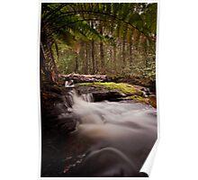 Relapse Creek Cascades Poster