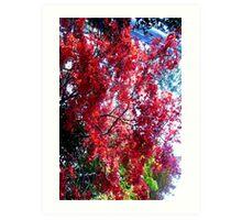 colors of Autumn no.6 Art Print