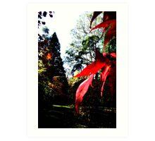 colors of Autumn no.8 Art Print