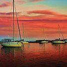 Extreme Sunset by Darlene Virgin