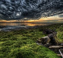Foreshore at Boundary Bay by toby snelgrove  IPA