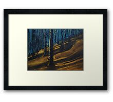 Long Shadows on Tunnel Mountain Framed Print