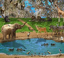Animals kingdom by Moshe Cohen