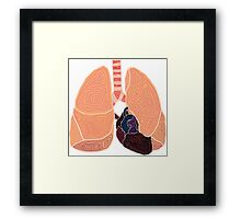 heart and lungs Framed Print