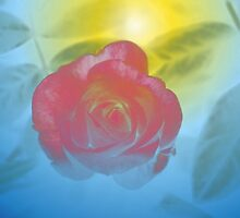Shimmering love by ♥⊱ B. Randi Bailey