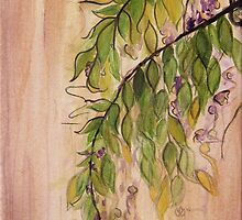 Wisteria by Carrie Jackson