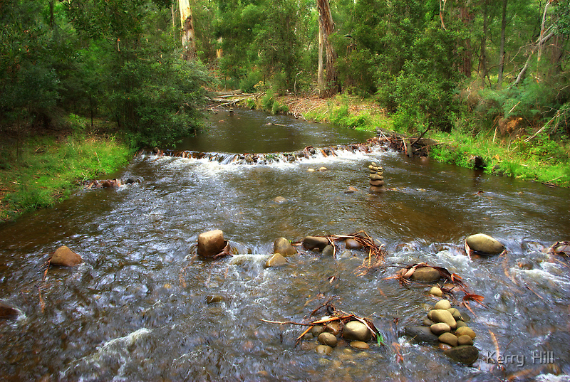 Little River by Kerry  Hill