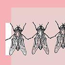 flies-holding-hands by nicola j f hallett