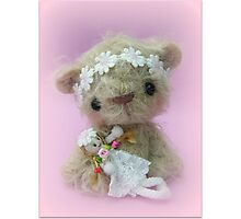 Little Gracie - Handmade bears from Teddy Bear Orphans Photographic Print