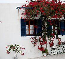 Lefkes, Paros, Greece by Leah Gay