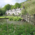 Chee Dale Cottages by John Keates