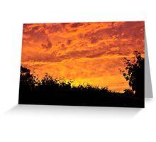 Vineyard Sunset Greeting Card
