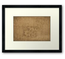 Vintage paper with flowers texture Framed Print