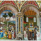 Postcard from Piccolomini Library, Siena by Paul Weston
