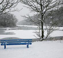 Winter Blues by John Keates