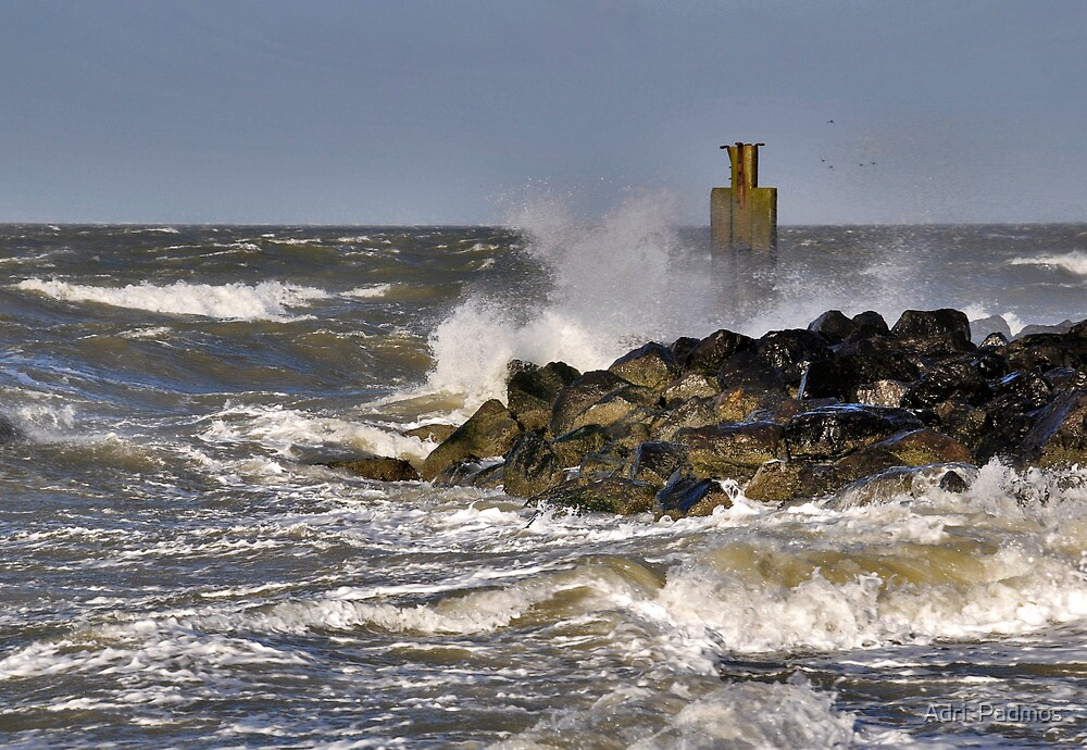 November storm by Adri  Padmos