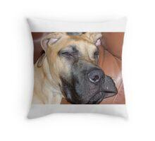 Big Dog Throw Pillow