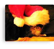 Lily Claus Canvas Print