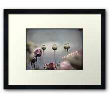 ~ Done and Dusty Pink ~ Framed Print