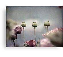 ~ Done and Dusty Pink ~ Canvas Print