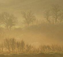 Dancing in the Mist-Monterosi, Italy by Deborah Downes