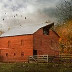 Red Barn by bettywiley