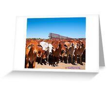 Lindfield Station Julia Creek Greeting Card