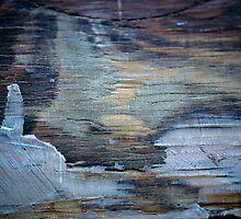 Northern Lights by Susana Weber