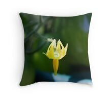 Birthing baby Roma.. Throw Pillow