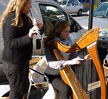 Bridport Town Musicians by lynn carter