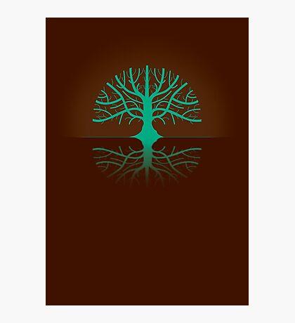 Tree Poster Photographic Print