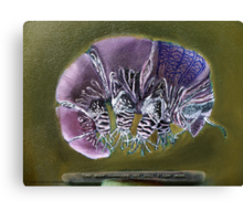 Symbiosis: Tardigrade Canvas Print