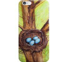 Robin's Nest iPhone Case/Skin