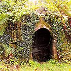 The Holy Well at St Brewards in Cornwall by trish725