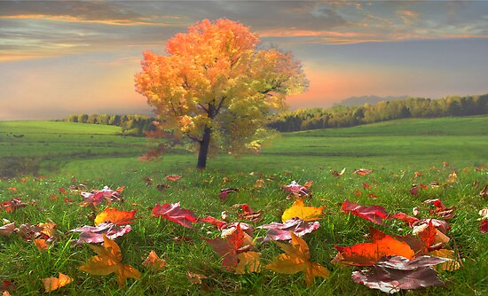 Autumn Landscape by Igor Zenin
