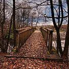 An Autumn Walk by eddiej